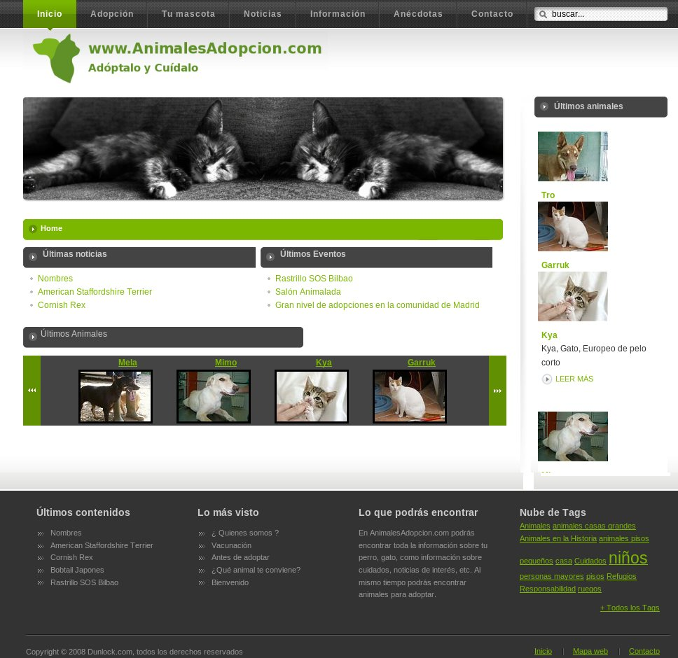 Web corporativa Joomla animales adopcion